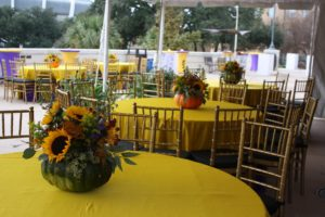 Tailgate Catering - LSU Tiger Catering